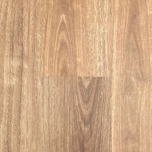 Corsica Collection Colour NSW Spotted Gum - Image 1