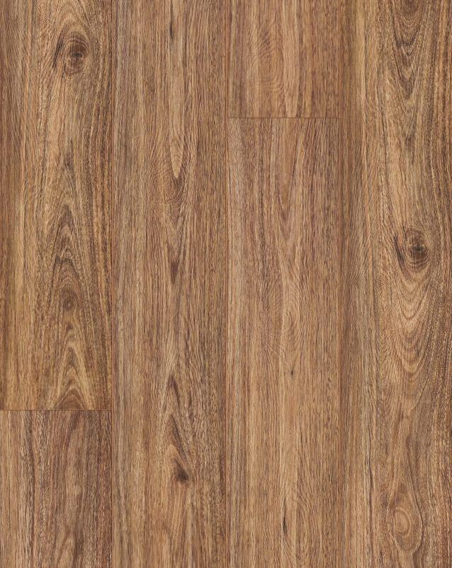 Easyliving SPC Flooring Collection Colour Spotted Gum - Image 1