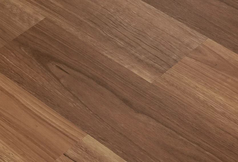 Definitive Hybrid Collection Colour Queensland Spotted Gum - Image 2