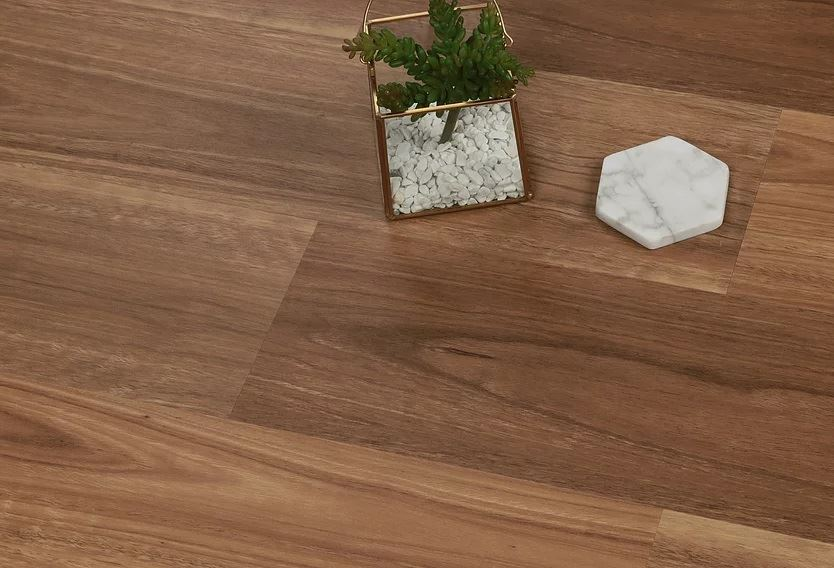 Definitive Hybrid Collection Colour Queensland Spotted Gum - Image 1