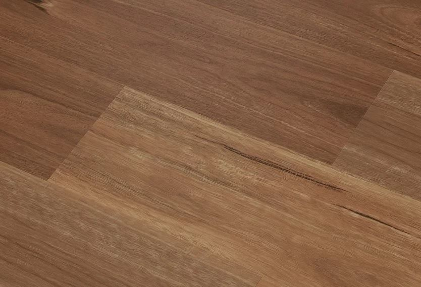 Definitive Hybrid Collection Colour New South Wales Spotted Gum - Image 2