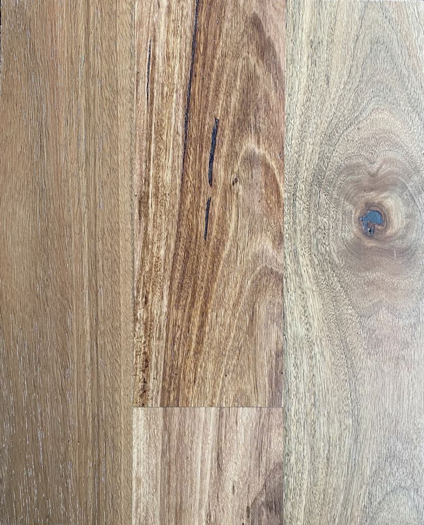 Select Australian Timber Collection Colour Brushed Spotted Gum - Image 1
