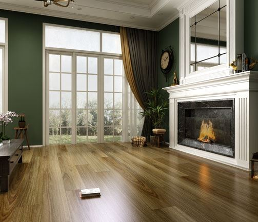 Australian Species HD Series Collection Colour NSW Spotted Gum - Image 2