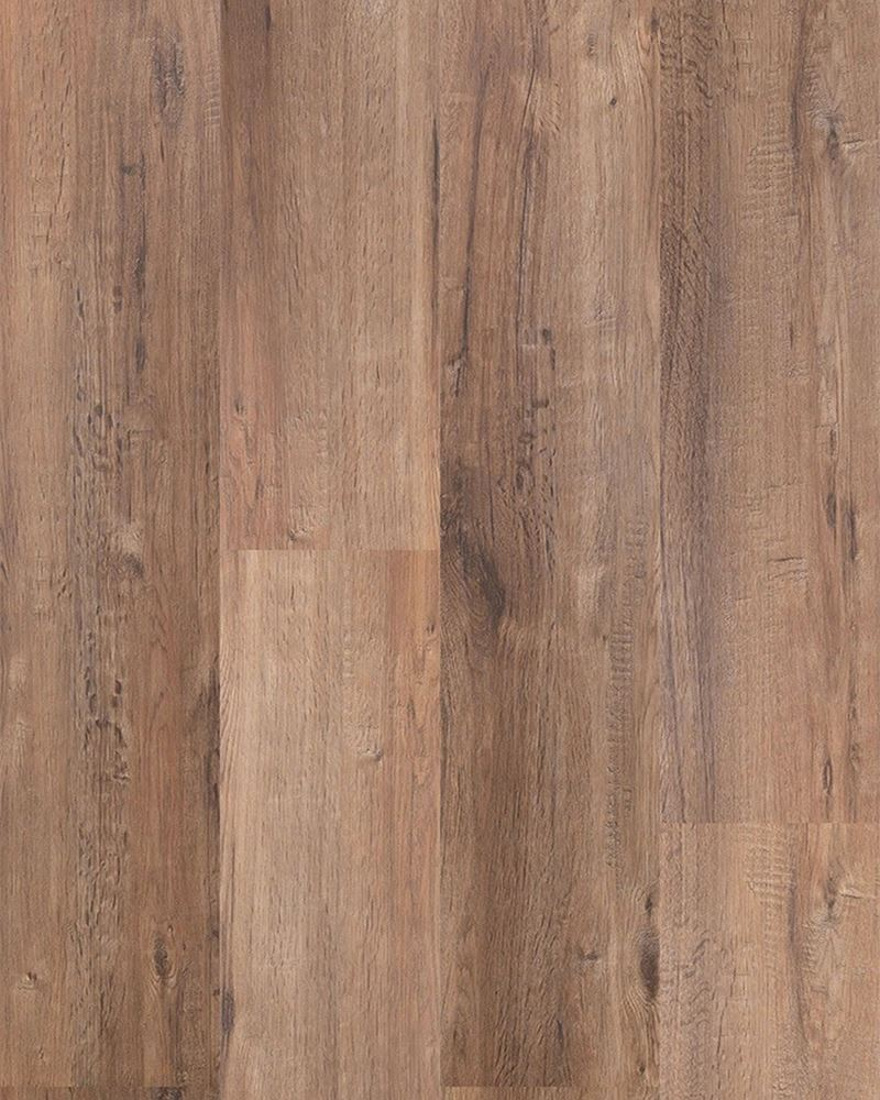 Innovation Collection Colour Banksia - Image 1